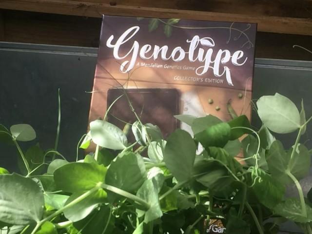 Genotype: A Mendelian Genetics Game Review